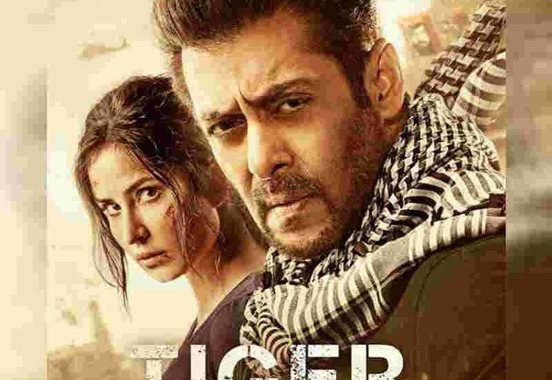 tiger zinda hai full hd movies download pagalworld